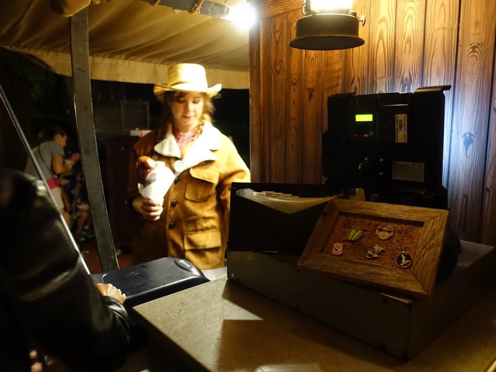 WDW旅行記ブログ/DCL旅行記ブログ マジックキングダム フローズンウィッシュ(シンデレラ城 点灯式)