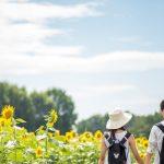 ブログ「ひよこ夫婦」公式LINE@(メルマガ)登録のご案内
