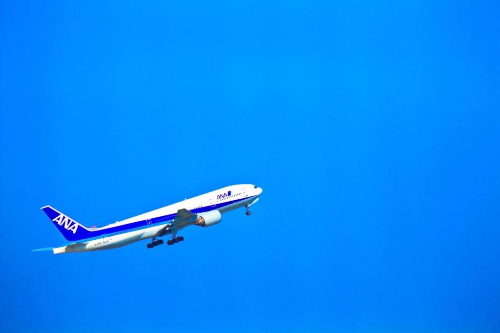 子連れハワイの航空券料金はいくら?ANAのバシネット(ベビーベッド)予約方法も紹介〜アウラニディズニー家族旅行準備