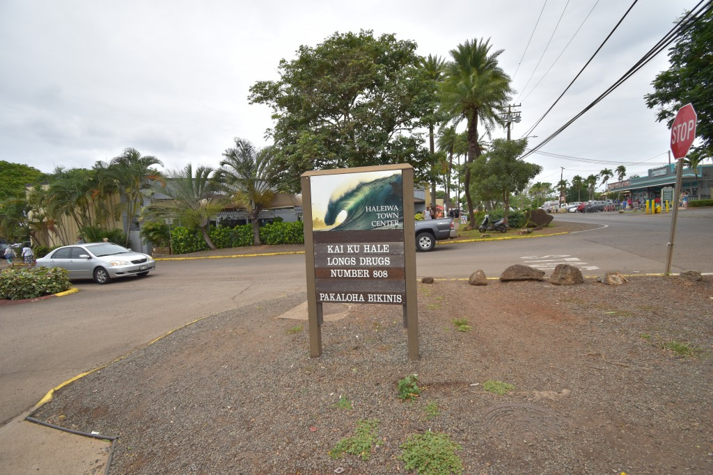 アウラニ旅行記*6〜オアフ島観光・ノースショアウミガメ探し&ハレイワ「カマロン」のガーリックシュリンプ【子連れハワイ旅行ブログ】