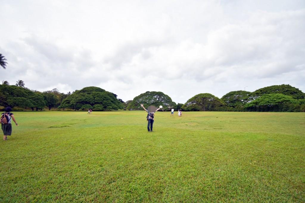 アウラニ旅行記*4〜オアフ島観光スタート「この木なんの木」のモアナルアガーデンは滞在時間20分で十分!?【子連れハワイ旅行ブログ】